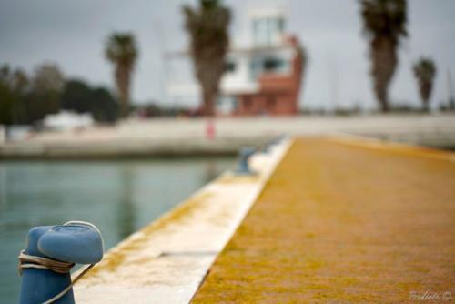 Porto degli Argonauti Pontile